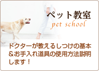 ペット教室